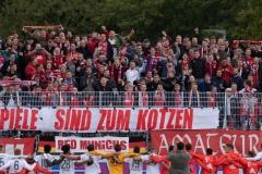 10. Spieltag: Preußen Münster - FC Bayern München II.
