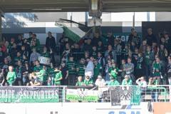 11. Spieltag: SC Preußen Münster - Fortuna Düsseldorf II 2:0. Fans auf der Gegengerade.