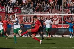 9. Spieltag: Hallescher FC gegen Preußen Münster. Joel Grodowski wirft sich rein.